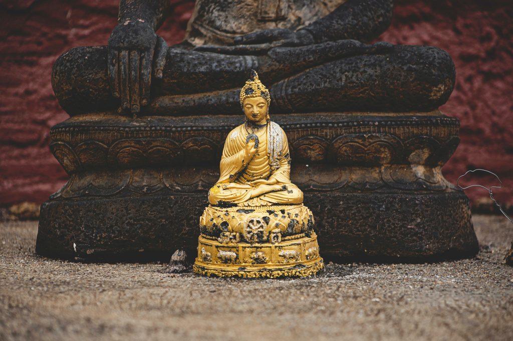 Find Your Golden Buddha