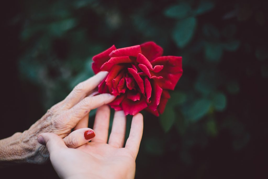 "Why Should We ""Embrace Elderhood?"""